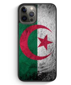 iPhone 12 Pro Silikon Hülle - Algerien Splash Flagge