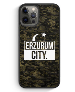 iPhone 12 Pro Max Silikon Hülle - Erzurum City Camouflage